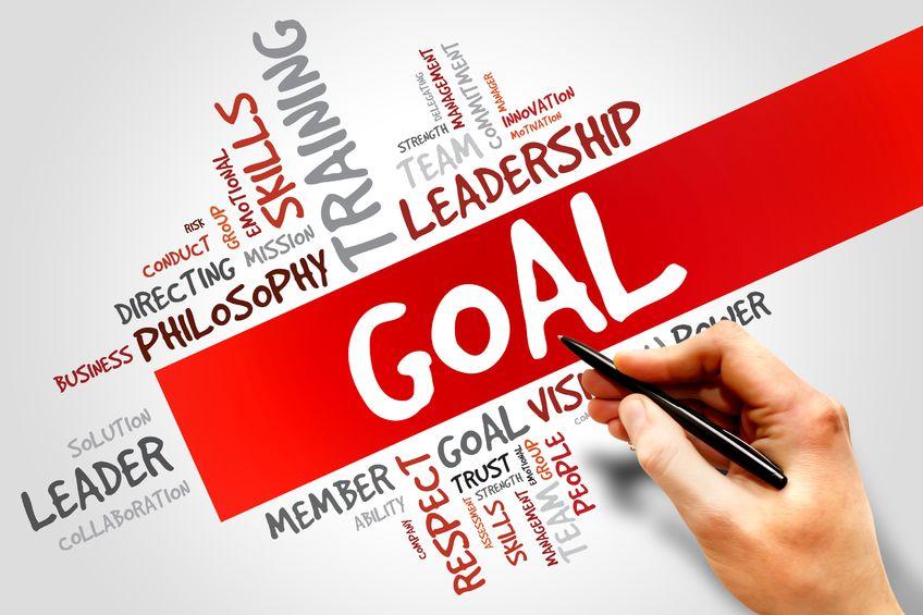 A Goal vs. The Goal