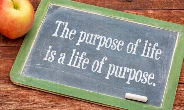 The Purposeless Life