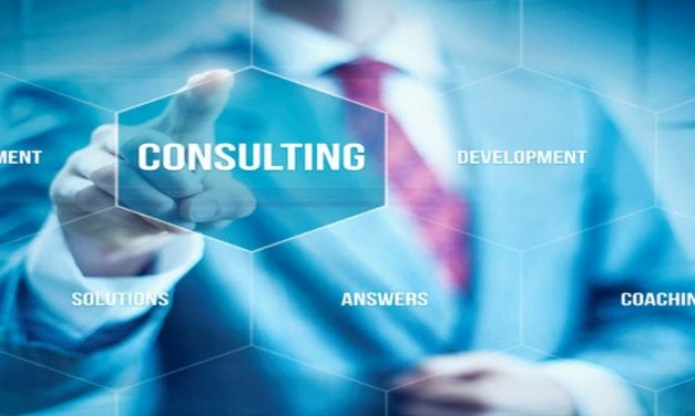 Solvere: A Combination of Manager and Consultant