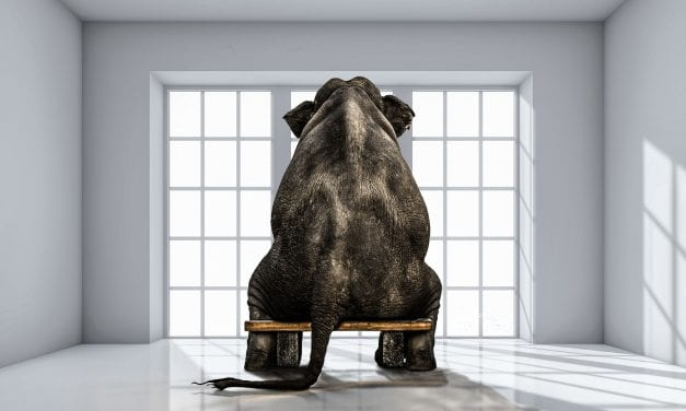 Senior Living's Super Ugly Elephant in the Room