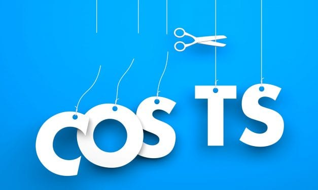 The Illogical Logic of Cost Cutting — You Are Not Trying This Are You?