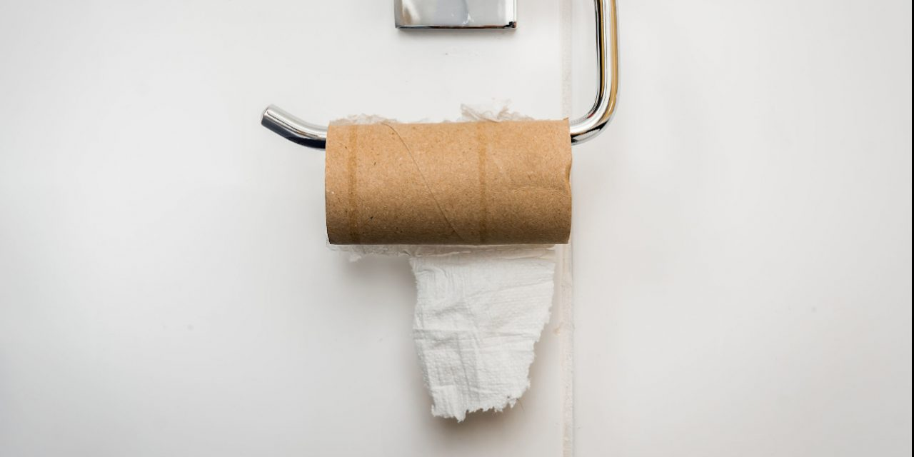 The Great Toilet Paper Battle